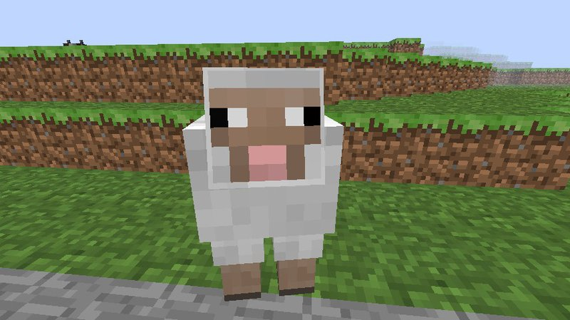 flossy_the_sheep.jpg